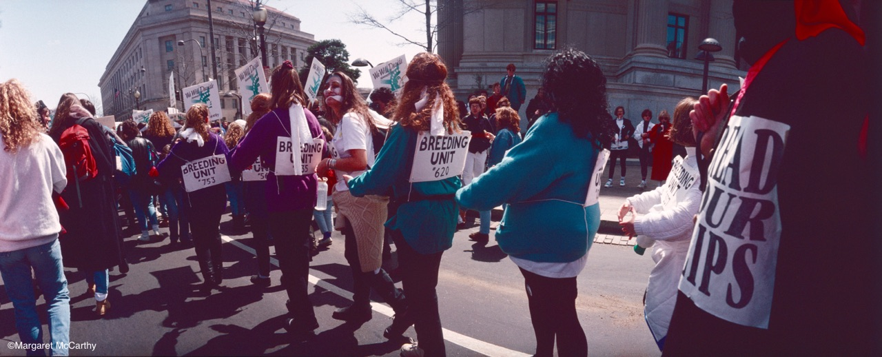 March for Women's Lives, Washington, D.C. April, 1989